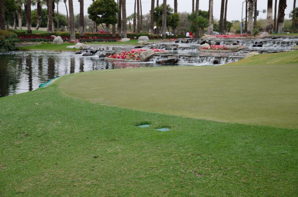 Desert Springs- Palm 3 Revised